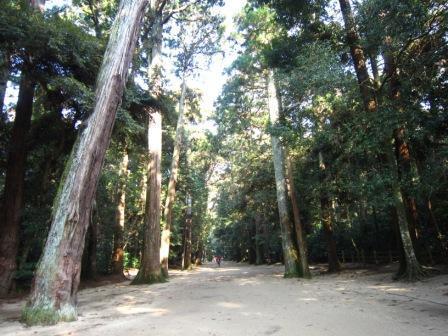 013奥宮への道.JPG