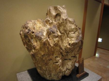 3水明館化石.jpg