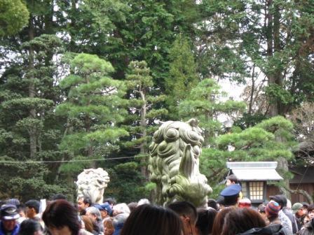 神社狛犬2.jpg
