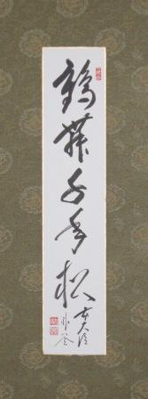 鶴舞松.JPG