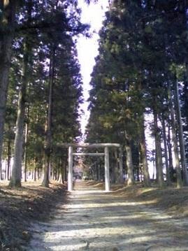 ML_TS3I00440001那須神社参道1.jpg